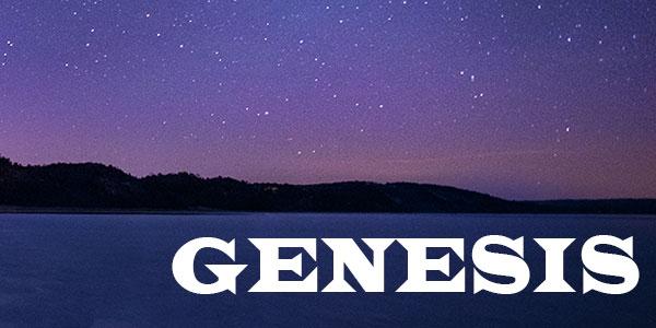 Genesis Series_2013