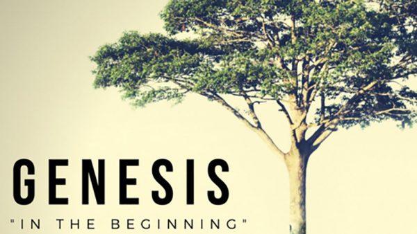 Genesis 8:20-9:17 Image